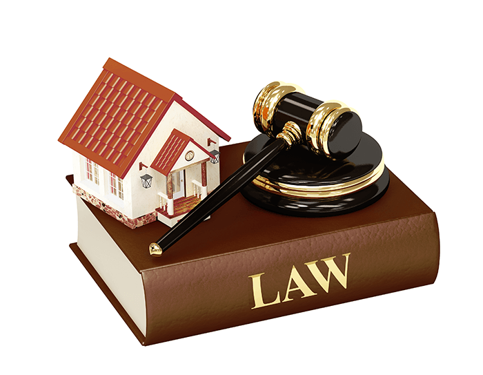 Litigation on real estate disputes